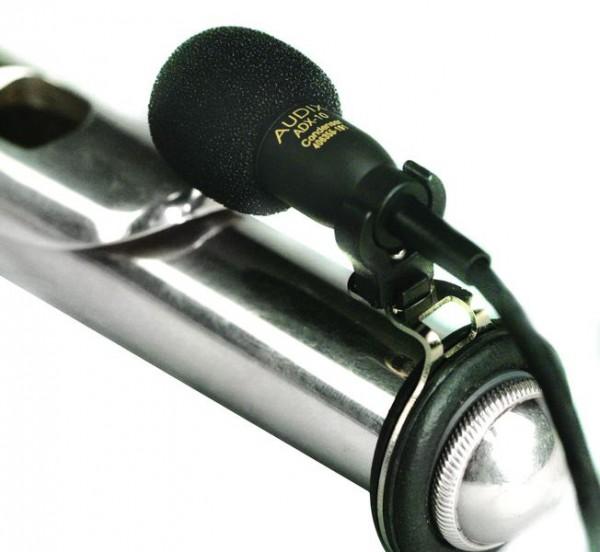 Mikrofon/Mikrophone